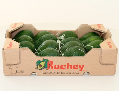 Diseño packaging aguacate Ruchey